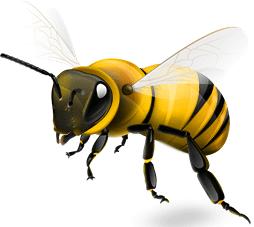 Tattoo Pain like a Bee Sting?